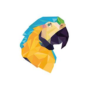 polygon parrots. beeldmerk